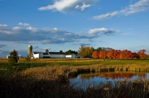 Kerrs-Farm-Pennington-NJ-by-nosha.jpg