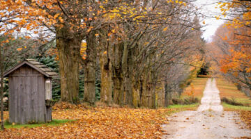 Fall Colors: Best Tips For Enjoying The Colorful Leaves