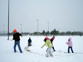 family-fun-snowball-fight-by-dmguz.jpg