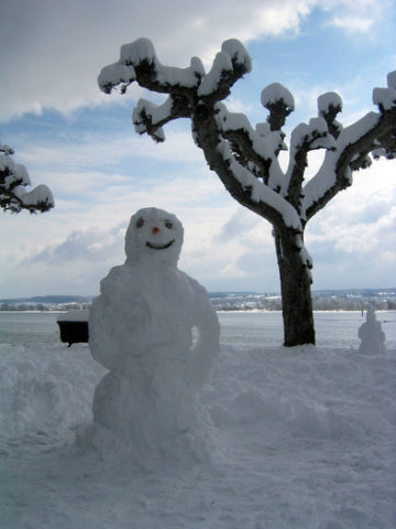 happy-snowman-with-arms-by-andreasmarx.jpg