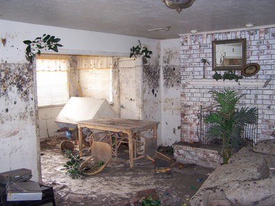 inside-home-damaged-by-hurricane-by-CST_13.jpg