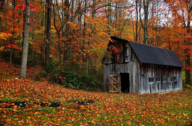 Tracking Autumn Leaves The Best Fall Foliage Map For Each - Us fall foliage map
