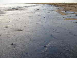oil-spill-cleanup-photo-by-marinephotobank.jpg