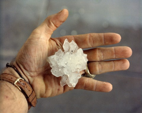 palm-size-hail-by-anoldent.jpg