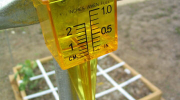 Rain Gauges: A Guide To The Best Rain Gauges On The Internet