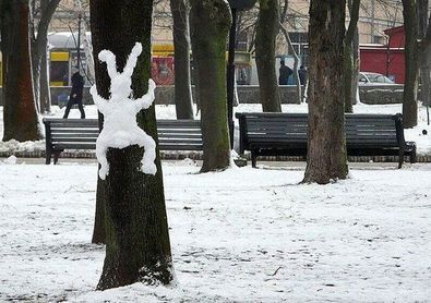 snow-bunny-on-tree-by-jonco.jpg