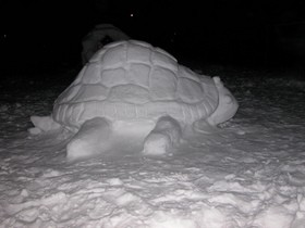 snow-turtle-sculpture-by-wedge-antilles-42.jpg