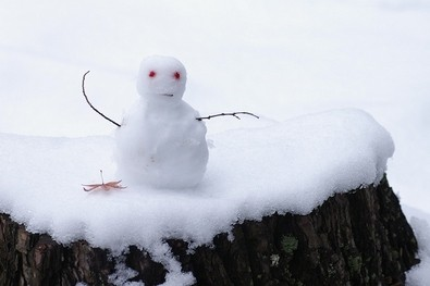 tiny-snowman-on-tree-stump-by-noe.jpg