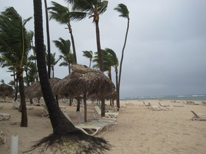 tropical-storm-hitting-beach-photo-by-stupid-dingo.jpg