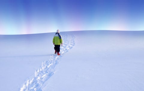 Walking in the snow while watching The Northern Lights show in the north sky.