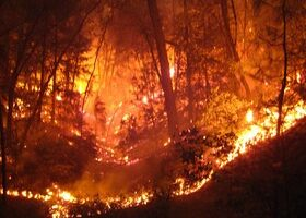 How To Protect Your House And Property From Wildfires