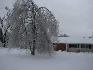 winter storms facts and info
